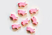 Pink piggy cookies