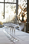 A row of white wine glasses