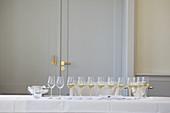 A white wine tasting