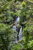The waterfall near Rara Avis Lodge in the rainforest, Costa Rice, Central America