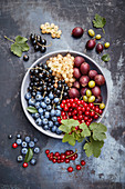 Bowl of various fresh berries on a gray background