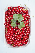 Fresh red currants in a cardboard bowl