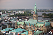 A view of the town hall, Hamburg, Germany