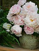 Strauß aus Pfingstrosenblüten 'Sarah Bernhard'