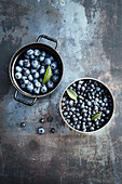 Freshly picked blueberries and fresh wild blueberries in pots