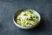 Green pointed cabbage risotto