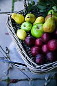 Weidenkorb mit Birnen, Äpfeln, Pflaumen und Zitrone