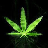 Cannabis leaf, fractal illustration