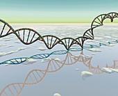 DNA over strange sea, illustration
