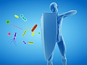 Immune system, conceptual illustration