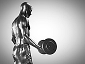 Man lifting dumbbells, illustration
