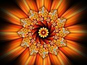 Sunflower mandala, abstract illustration