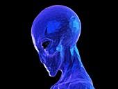 Alien, illustration