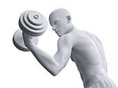 Man working out, illustration
