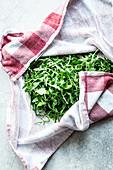Rucolasalat im Geschirrhandtuch frisch halten