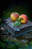 Two apples with leaves and a knife on a wooden block