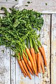 Frische Karotten mit Grün auf Holzuntergrund