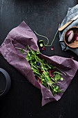 Fresh wild herbs in a beeswax wrap