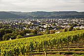 Petrisberg at Trier, Rhineland-Palatinate, Germany