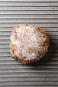 Brot mit Cranberries und Kürbiskernen auf Backrost