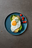 Bread topped with lettuce leaves, tomatoes, mountain cheese, fried egg and dill