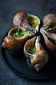 Giant snails escargots baked with butter, garlic and parsley.