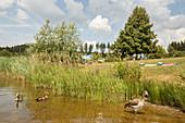 Losheim Lake, Saarland, Germany