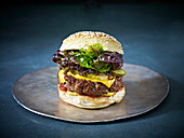 A cheese burger with caramelised onion on a sesame seed bun