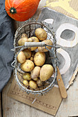Freshly harvested potatoes in a wire basket