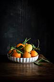 Orangen und Zitronen in flacher Schale vor dunklem Hintergrund