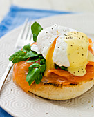 Egg Florentine - Poached egg with runny yoke and bechamel sauce, on spinach and smoked salmon, served on a toasted muffin