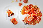 A baseless cheesecake with blood oranges