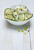 Cucumber salad with radishes and spring onions