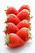 Zwei Reihen Erdbeeren mit Wassertropfen