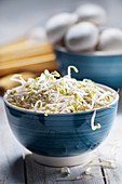 Soybean sprouts in a blue ceramic bowl