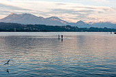 Lake Lucerne with a backdrop of the mountains with stand-up paddlers in the background, Switzerland