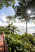 A view of the Pacific from the Osa peninsula, Costa Rica, Central America