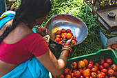 A woman selling vegetables at a market (India)