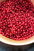 Destemmed redcurrants ready to cooked in a copper pot
