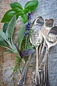 An arrangement of fresh garden herbs and vintage spoons