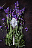An engraved silver spoon on sprigs of lavender