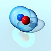 Nitric oxide, molecular model