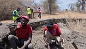 Archaeologists excavating shellfish burial mound