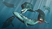 Prehistoric whale Zygophyseter pod attacking