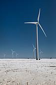 Wind farm in snow, Michigan, USA