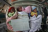 Newborn babies, Afghanistan