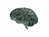 Human brain made from money, illustration
