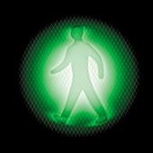 Bright green traffic light, X-ray