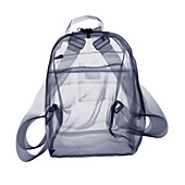 Backpack bag, X-ray