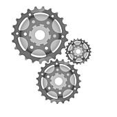 Gears, X-ray